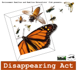 DisappearingAct